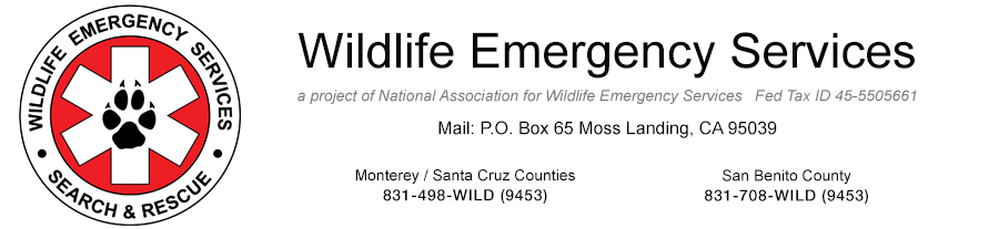 Wildlife Emergency Services